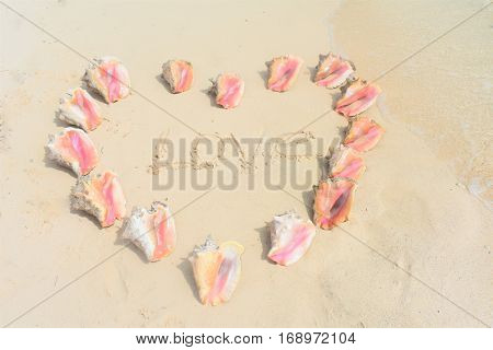 love heart on the beach in conch shells