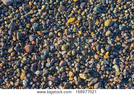Beautiful colorful stones rocks pebbles on California beach sunlit wet background