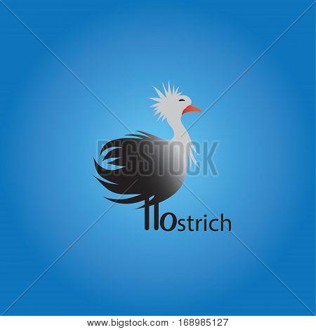 ostrich ideas design vector illustration on background