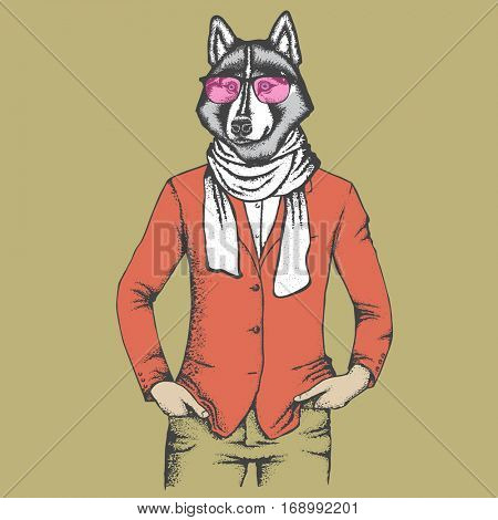 Vector dog concept. Hand draw vector siberian husky dog on human body. Husky in human suit