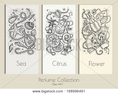 Vintage vector set with perfume design cards. Hand drawn engraved illustration with sea, citrus and flower fragrances. Concept of beauty product packaging