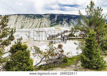 Mamoth Hot Springs Panorama View In Yellowstone National Park
