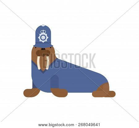 Walrus British policeman. Long tusks. Sea animal antarctica in cap British police officer. poster