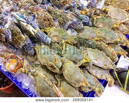 Fresh Portunus Pelagicus On A Tray And Container With Ice On Crab In Market And Is Popular Of Touris