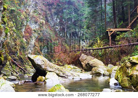 Mountain River Among The Beautiful Rocks Of The Coniferous Forest. Mountain Landscape. Nature Backgr