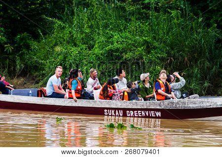05 October 2013 Sabah. Borneo. Malaysia. Rainforest Along The Kinabatangan River, Sabah, Borneo. Mal