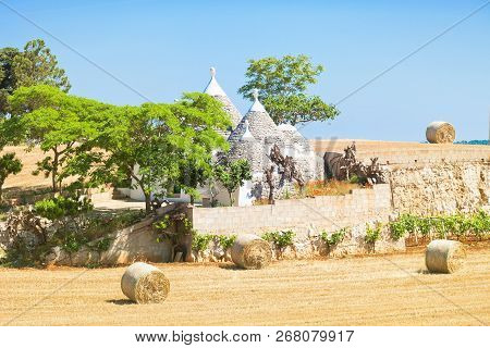 Martina Franca, Apulia, Italy - Traditional Apulian Trulli Farmhouse In Italy