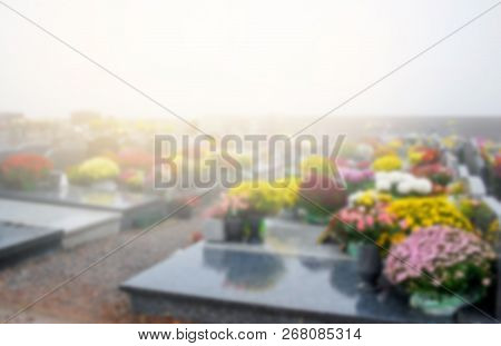 Blurry Background Scene Cemetery In Foggy Moning  With Flowers Multicolors Blooming In Autumn Season