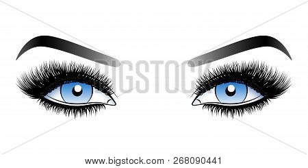 Blue Woman Eyes With Long False Lashes With Eyebrows. Vector Illustration Isolated On White Backgrou