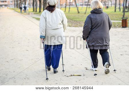 Older Women Walk Around The Park With Ski Poles. Life Is Retired.
