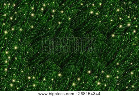 Vector Festive Naturalistic Looking Pine Branches Background. Fir Branches Christmas Pattern With Sh