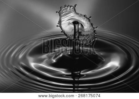 Water Droplet Splash Close Up Black And White.