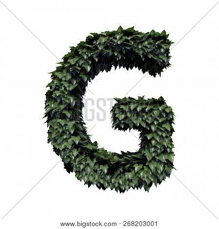 Fresh Green Foliage Letter G, 3d Rendering