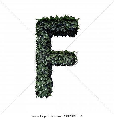 Fresh Green Foliage Letter F, 3d Rendering
