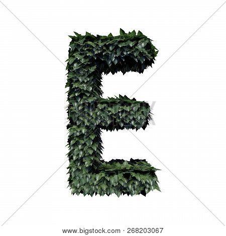 Fresh Green Foliage Letter E, 3d Rendering