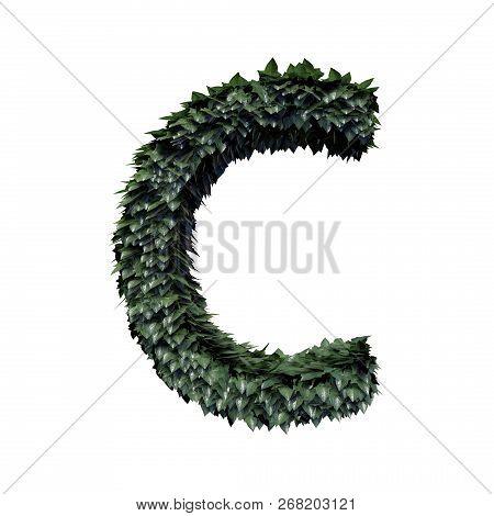 Fresh Green Foliage Letter C, 3d Rendering