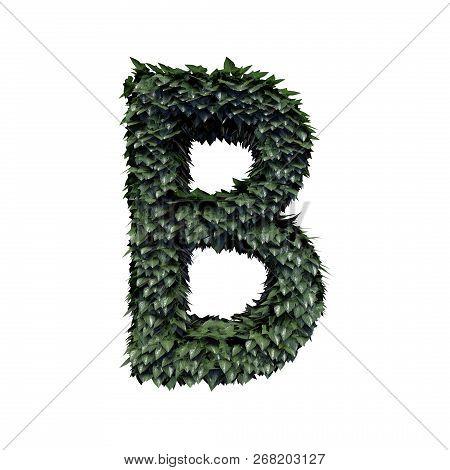 Fresh Green Foliage Letter B, 3d Rendering