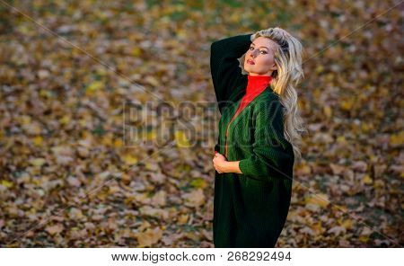 How To Take Care Of Your Hair In Autumn. How Repair Bleached Hair Fast And Safely. Autumn Hair Care