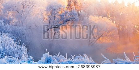 Frosty Christmas Morning. Winter Landscape With Frosty Trees Lit By The Morning Sun. Winter Panorama