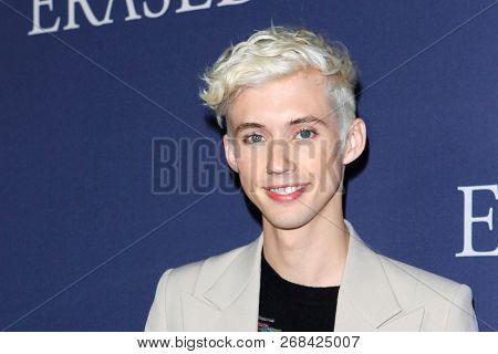 WEST HOLLYWOOD - OCT 29: Troye Siv arriving at the Premiere of Boy Erased at the Directors Guild of America on October 29, 2016 in West Hollywood, California