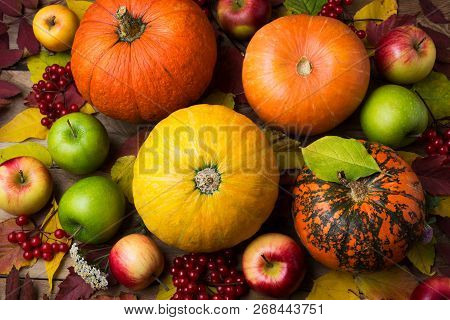 Fall Background With Yellow Pumpkin And Viburnum