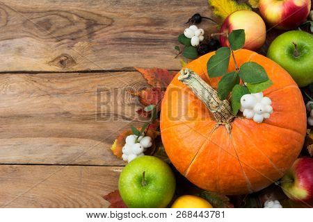 Rustic Greeting With Pumpkin, White Berries, Copy Space