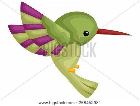 A Vector Of A Cute Flying Hummingbird