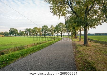 Curved Country Road With A Row Of Trees On One Side And A Ditch On The Other Side. It Is A Cloudy In
