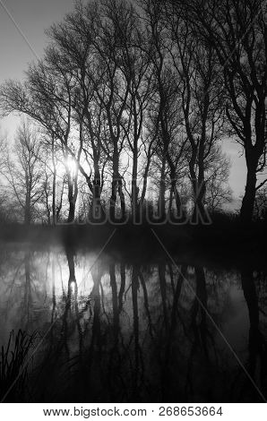 Black And White Photograph Of A Misty River, Which Reflects The Silhouettes Of Bare Trees, Backlight