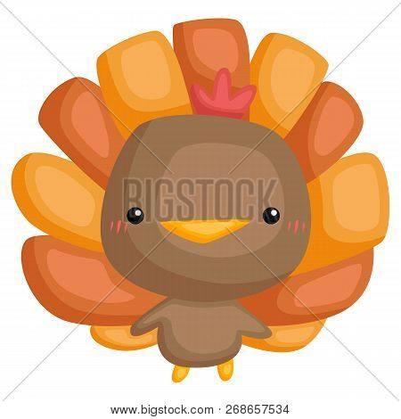 A Vector Of Cute And Adorable Turkey