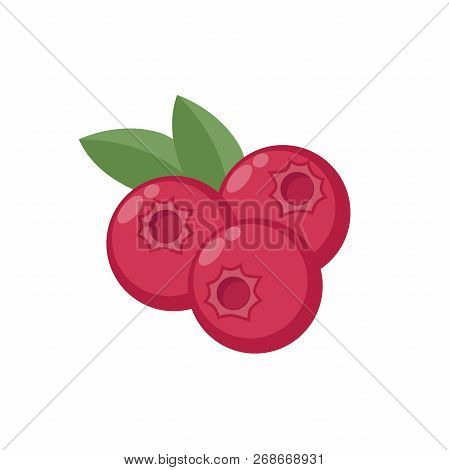 Cranberry Colorful Clipart Cartoon. Cranberries With Leaves Vector Cartoon In Color.