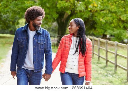 Black adult couple,boyfriend,girlfriend walk holding hands in the countryside,close up