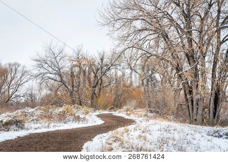 windy trail in fall or winter scenery in one of natural areas in Fort Collins, Colorado along the Poudre River converted from gravel quarry