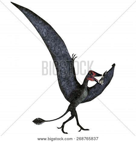Dorygnathus Pterosaur On Ground 3d Illustration - Dorygnathus Was A Carnivorous Pterosaur Reptile Th