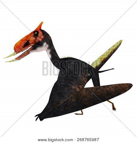 Dsungaripterus Pterosaur Walking 3d Illustration - Dsungaripterus Was A Pterosaur Raptor Bird That L