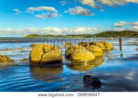 Travel to New Zealand. Boulders Moeraki -  large spherical boulders on the beach Koekokhe. Ocean evening tide. The concept of active, eco and photo tourism