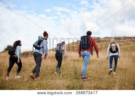A group of five young adult friends hiking across a field towards the summit, back view