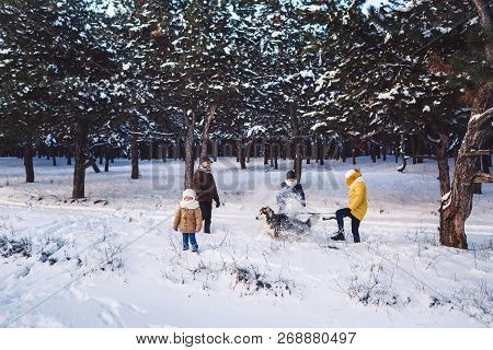 Happy Young Caucasian Family Plays With A Dog In Winter In A Pine Forest. Photo For Advertising Fami