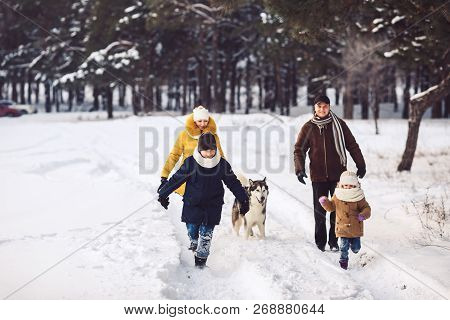 Happy Young Caucasian Family Is Having Fun Running With The Dog In The Winter In A Pine Forest. The