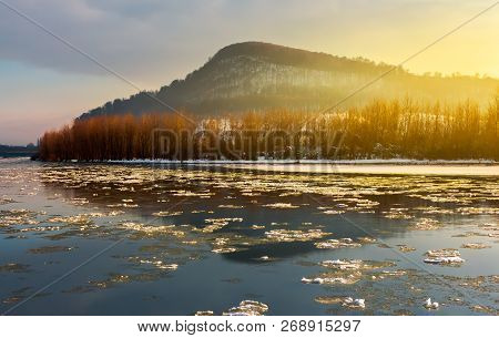 Floating Of Ice On The River Tisza In Winter. Lovely Carpathian Landscape With Leafless Trees On The