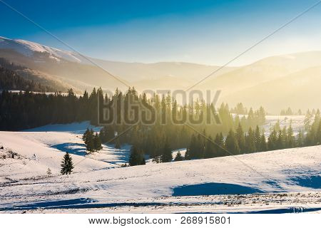 Beautiful Winter Landscape In Mountains. Glowing Fog Above The Forest On Snow Covered Hills. Beautif