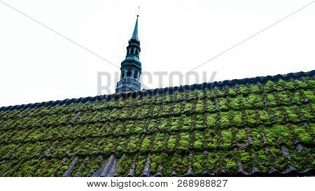 Moss Roof On Shed In The Fall. Traditional Housing Of The Indigenous Populations Of Estonia. Facade
