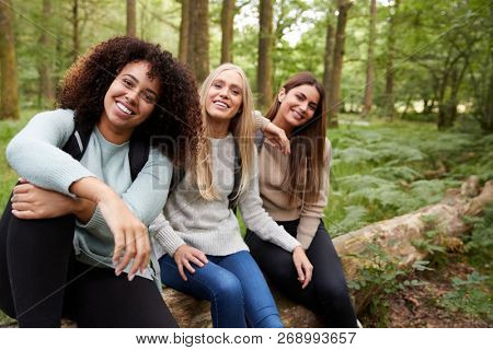 Three happy young adult women taking a break sitting on a fallen tree in a forest during a hike, portrait