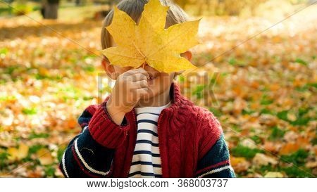 Portrait Of Smiling Toddler Boy Holding Yellow Mapple Tree Leaf At His Face