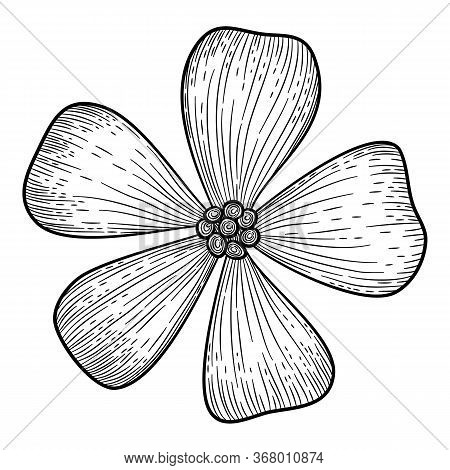 Jungle Tropical Island Flower Icon. Hand Drawn Illustration Of Jungle Tropical Island Flower Vector