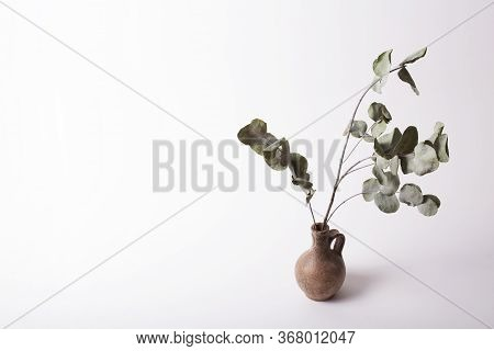 Life Style Inspiration. Stock Photo With Empty Space For Text On The Left. Vase And Dry Eucalyptus P