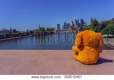 A Small Cuddly Toy Was Enjoying The View To The Center Of Frankfurt