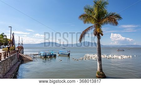 Dock And Promenade On Lake Chapala With A Palm Tree, White Pelicans, Motor Boats And Mountains In Th