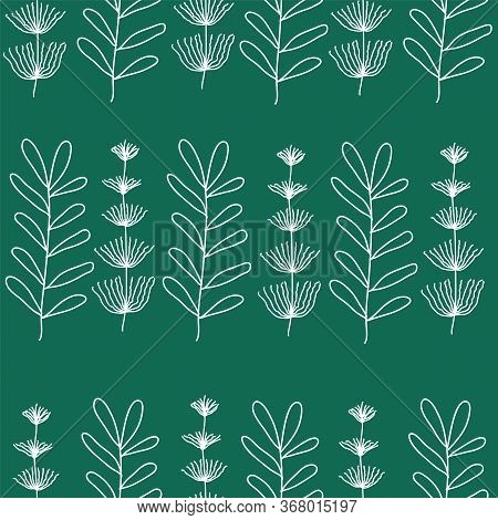 Vector Seamless Pattern With Hand Drawn Field Horsetails Amd One More Prehistoric Flower In A Rows.