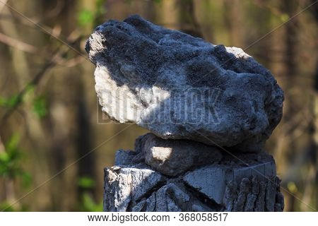 A Salt Cube Prepared For Forest Animals. Lick In The Forest Near The Pasture. Season Of The Spring